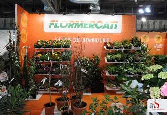 Lo Stand Flormercati
